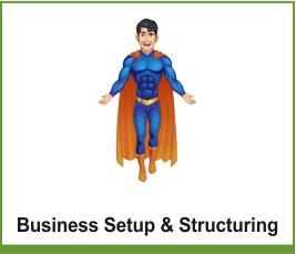 Business Setup & Structuring